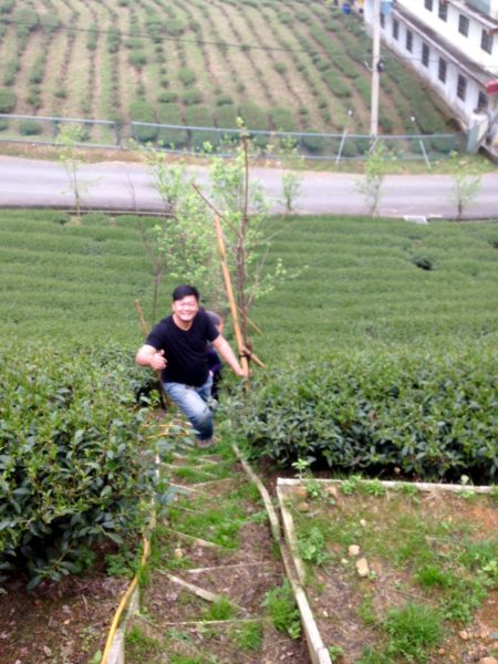 Alfredo climbing San Lin Shi