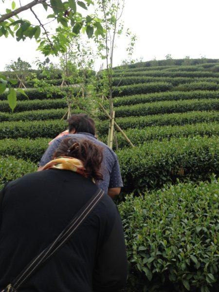 Climbing San Lin Shi